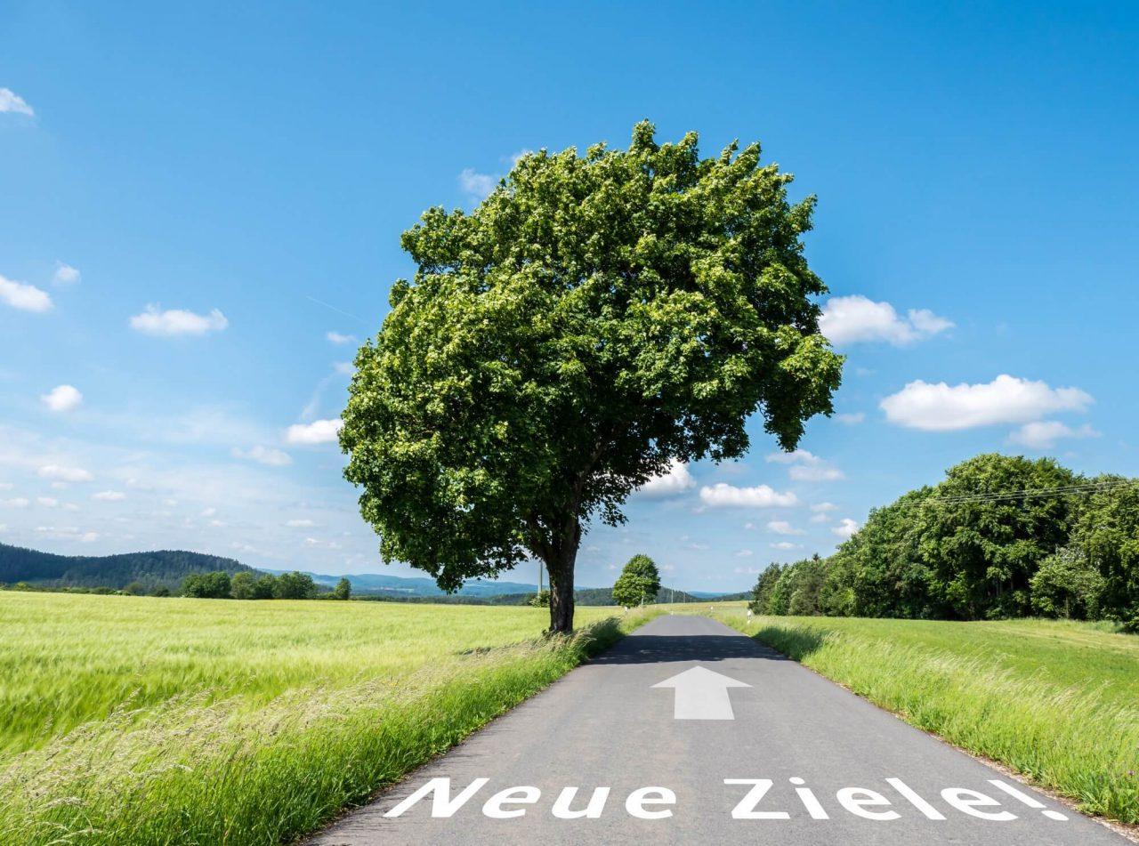 Asfalt vej med grønne marker og stort træ, hvor der er skrevet 2 tyske ord og stor hvid pil