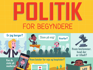 Politik for begyndere